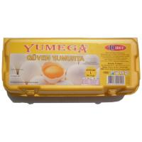 10 lu Kapalı Paket Yumurta